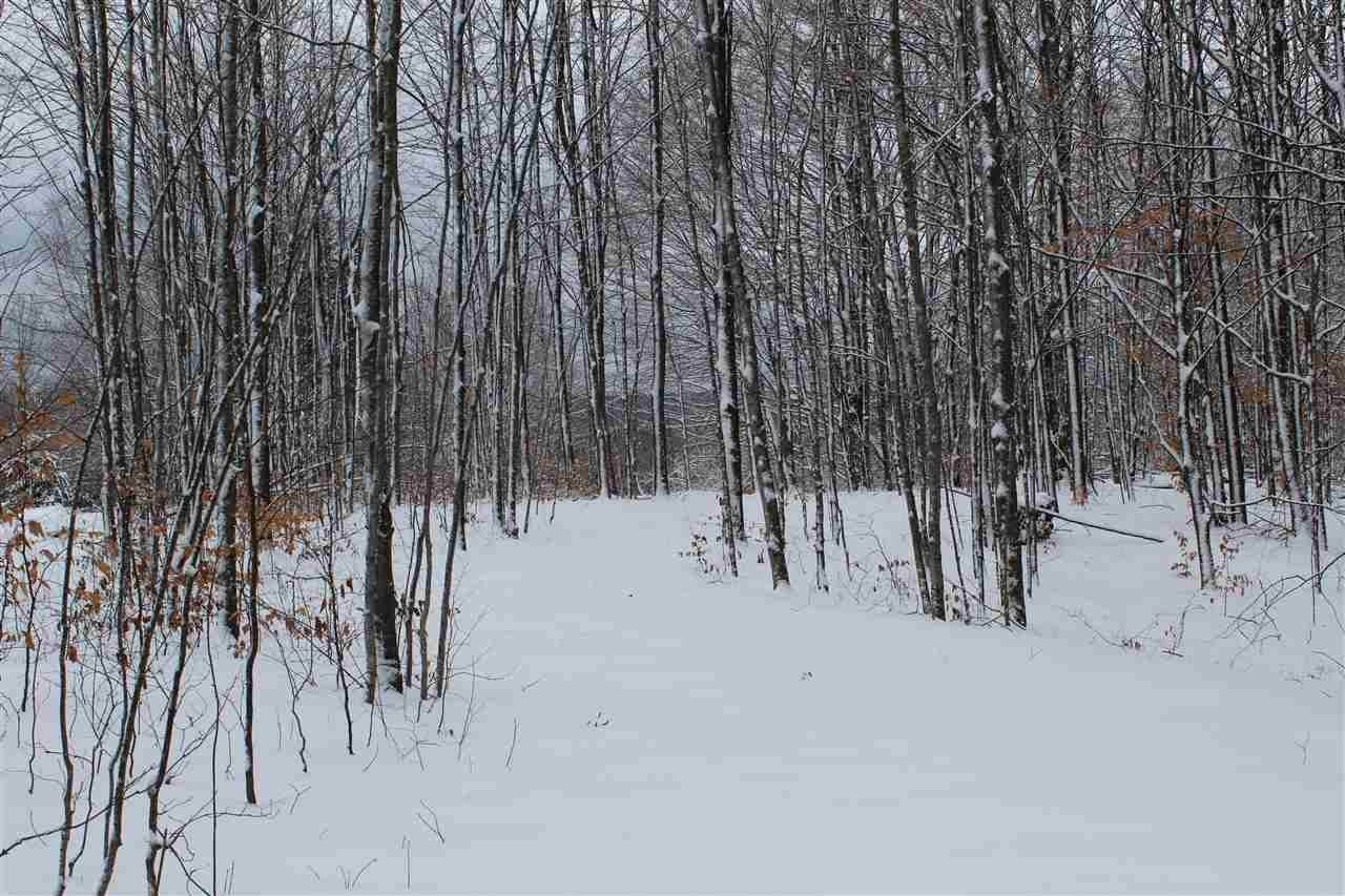 Land at 4240 Mountainview Trail Boyne Falls, Michigan 49713 United States