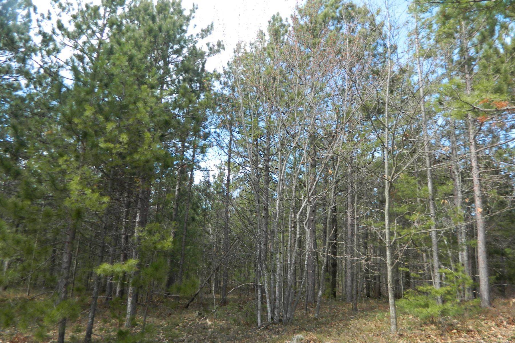 Land for Sale at Vacant Land near Sturgeon Bay Lake Shore Drive Harbor Springs, Michigan 49740 United States
