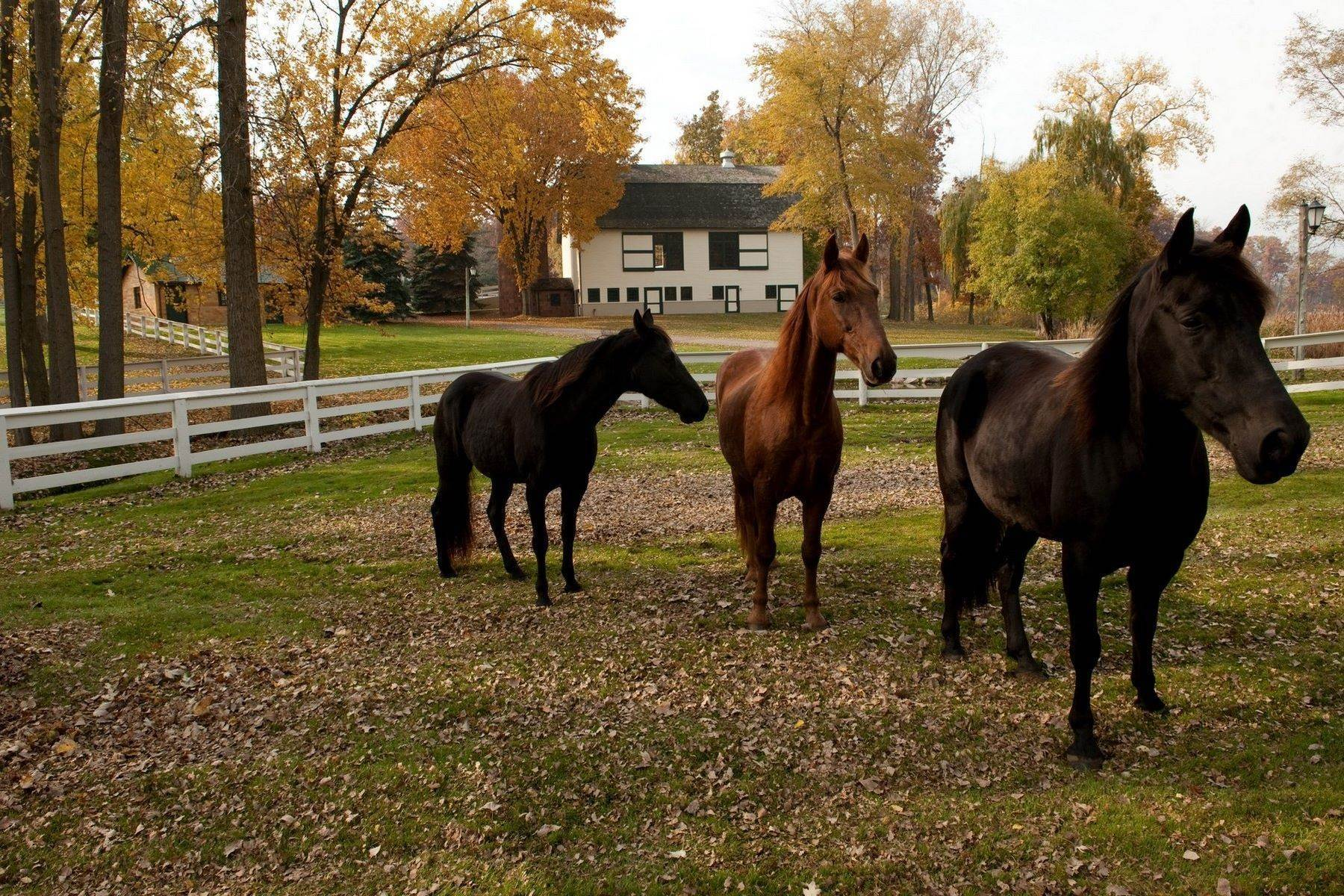 34. Property for Sale at The Stables 2670 Turtle Lake Drive, #44 and #45 Bloomfield Hills, Michigan 48302 United States